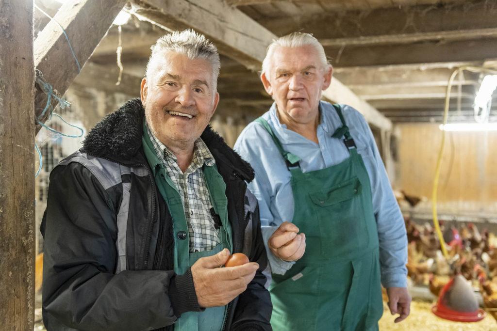 Zwei Männer im Hühnerstall